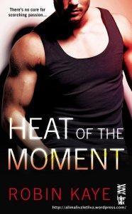 HeatOfTheMoment-RobinKaye-Oct2014