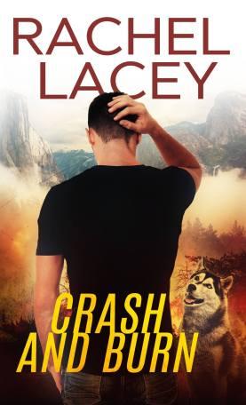 CrashAndBurn-Stranded#1-RacheclLacey-Sept2017
